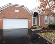 9258 Dunmore Drive, Orland Park image