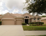 11732 Manistique Way, New Port Richey image