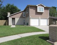 507 Northlawn Drive, Houston image