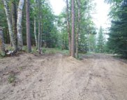 20003 Little Bear Lake Road, Cook image