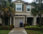 10418 Butterfly Wing Court, Riverview image