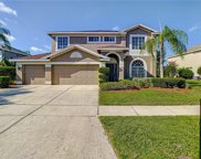 13009 Carlington Lane, Riverview image