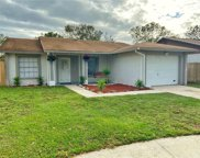 1735 Lakeview Village Drive, Brandon image