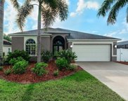 6270 Bobby Jones Court, Palmetto image