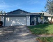 14511 Midland Greens Place, Tampa image