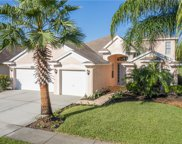 4623 Pointe O Woods Drive, Wesley Chapel image