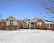 11031 Royal Oaks Lane, Orland Park image