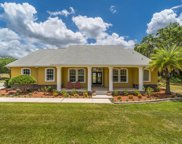 8922 Antioch Country Place, Thonotosassa image