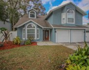 3031 Pine Forest Drive, Palm Harbor image