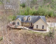 166 Blue Ridge Vista Ln, Otto image