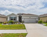1140 Pipestone Place, Wesley Chapel image