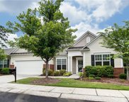 33120  Tanager Court, Indian Land image