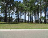 919 Fiddlehead Way, Myrtle Beach image