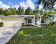 10209 Winding Creek Lane, Orlando image