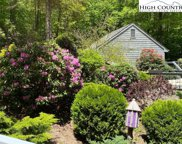 106 Grouse Moor  Drive, Linville image