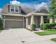 15707 Courtside View Drive, Lithia image