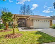 17709 Emerald Green Place, Tampa image