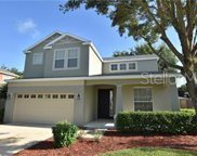3578 Oak Brook Lane, Eustis image