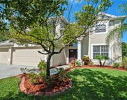 19216 Inlet Cove Court, Lutz image