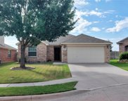 14216 Polo Ranch Street, Fort Worth image