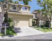 204 Forest Creek Ln, San Ramon image