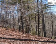 TBD Happyland Road, Piney Creek image