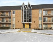 1104 N Mill Street Unit #2-202, Naperville image