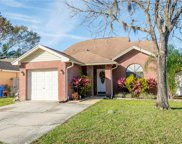 12843 Coverdale Drive, Tampa image