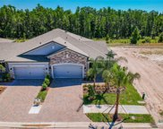 19373 Hawk Valley Drive, Tampa image