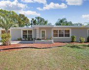 13407 Forest Hills Drive, Tampa image