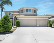 11107 Hoffner Edge Drive, Riverview image