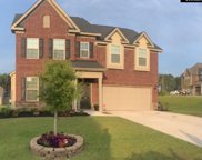 321 Outer Wing Lane, Blythewood image