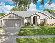 7227 Bucks Ford Drive, Riverview image