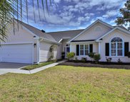 528 Wildflower Trail, Myrtle Beach image
