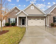 322 Shallowford Reserve Drive, Lewisville image