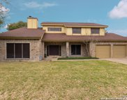 4511 Black Oak Woods, San Antonio image
