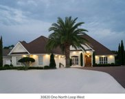 30820 Ono North Loop West, Orange Beach image