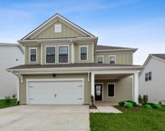 944 Carraway Ln, Spring Hill image