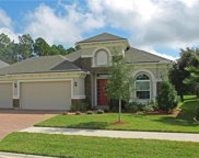 95060 SUGARBERRY COURT, Fernandina Beach image