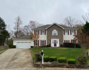 105 Spruce Pine  Court, Fort Mill image