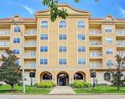 2203 Dorrington Street Unit 306, Houston image
