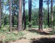 3376 Red Robin Road, Pinetop image