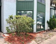 2528 Lemon Tree Lane Unit E, Orlando image
