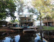 3142 Mildred Drive, Palm Harbor image