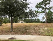 1042 Muscovy Pl., Conway image