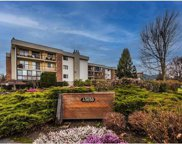 45650 Mcintosh Drive Unit 1101, Chilliwack image