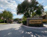 26337     Arboretum Way   701, Murrieta image