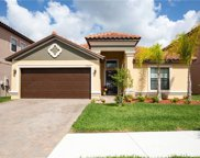 12015 Cardinal Flower Drive, Riverview image