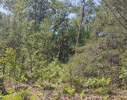 Pawnee Trail Unit LOT 266, Rogers City image