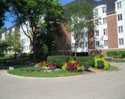 250 Lake Boulevard Unit #255, Buffalo Grove image